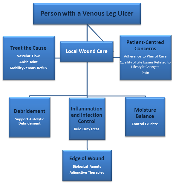 Wound Bed Preparation Paradigm